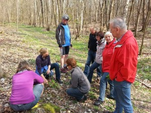 Frühlingsblüherexkursion-Oderwald-10April2016_